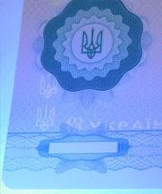 Диплом - свечение УФ (Львов)